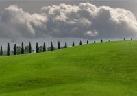 Paesaggio-Pisano