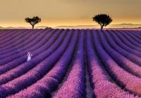 Marco-Bani_Sunset-en-Provence