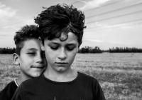 Riccardo-Picchi_Facciamo-la-pace_2017