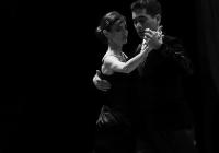 IMG_5743-Tango-1