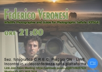 2020.06.03-Ospite-Federico-Veronesi